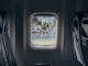 Аэропорт Симферополь попал на деньги из-за птицы